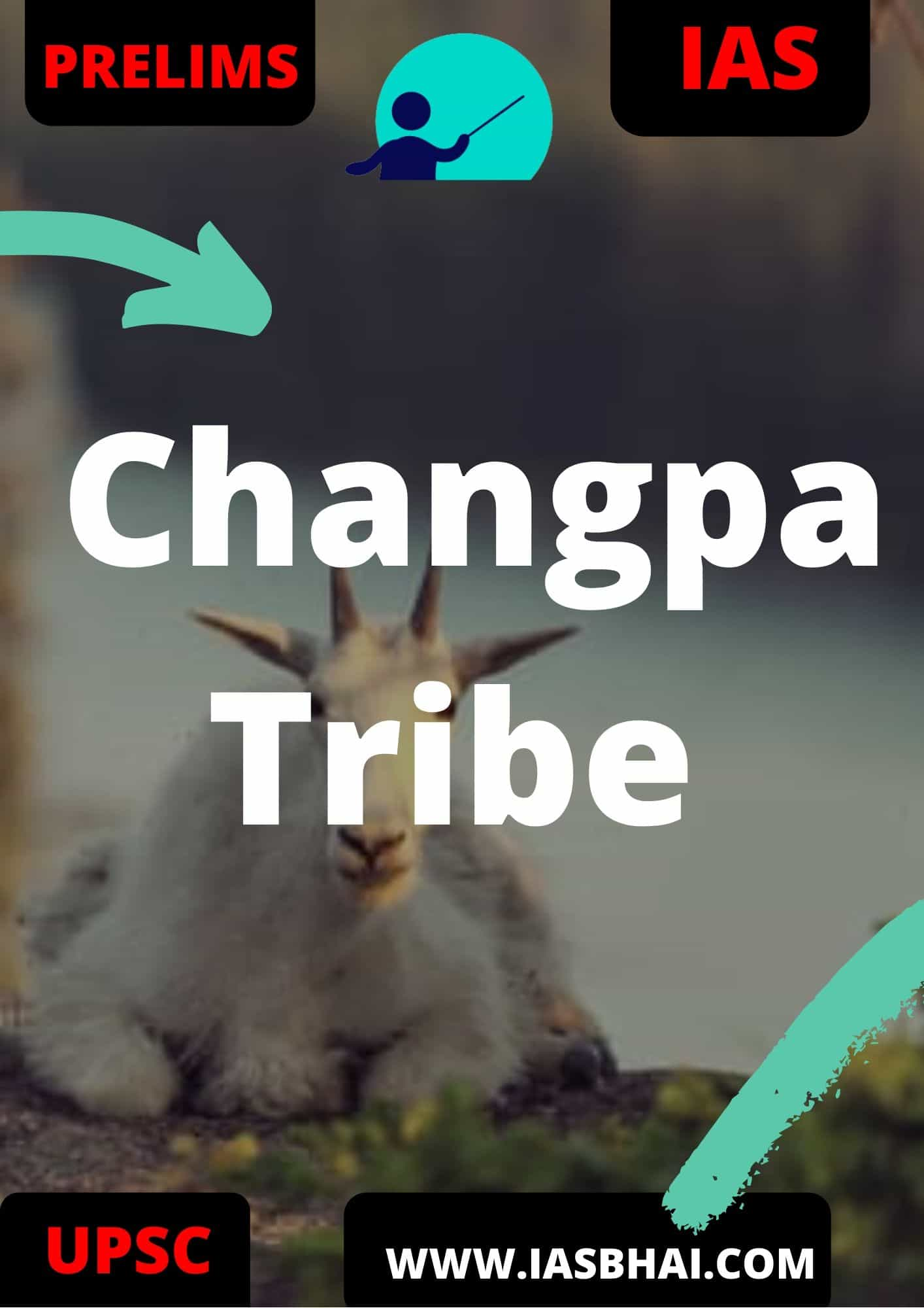 Changpa Tribe