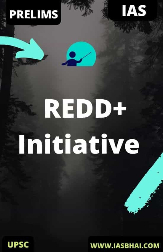 Everything About REDD+ Initiative
