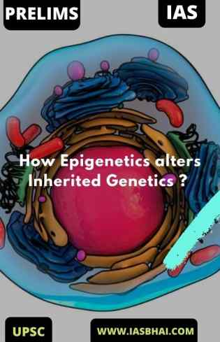 Explained : How Epigenetics alters Inherited Genetics ? | UPSC