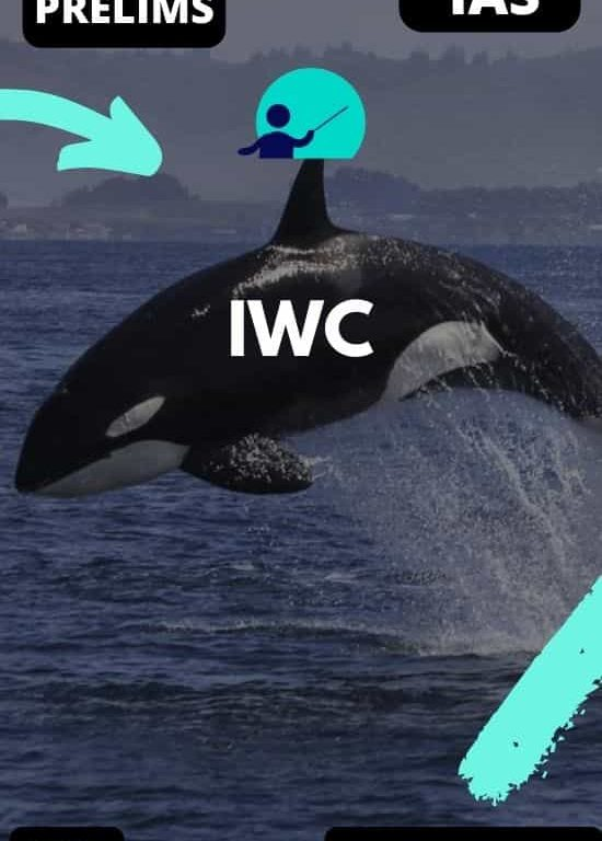 International Whale Commission _ UPSC