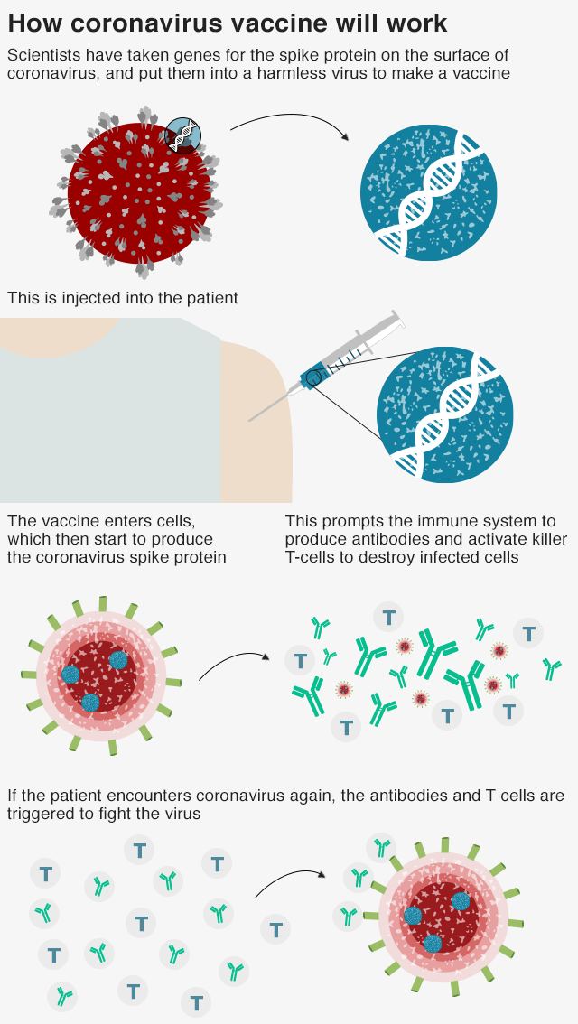 The Purpose of a Vaccine | UPSC