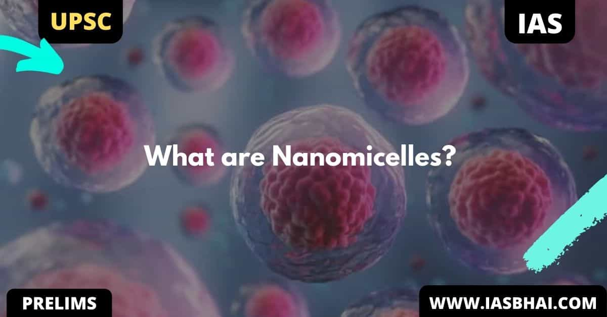 Explained : What are Nanomicelles | UPSC