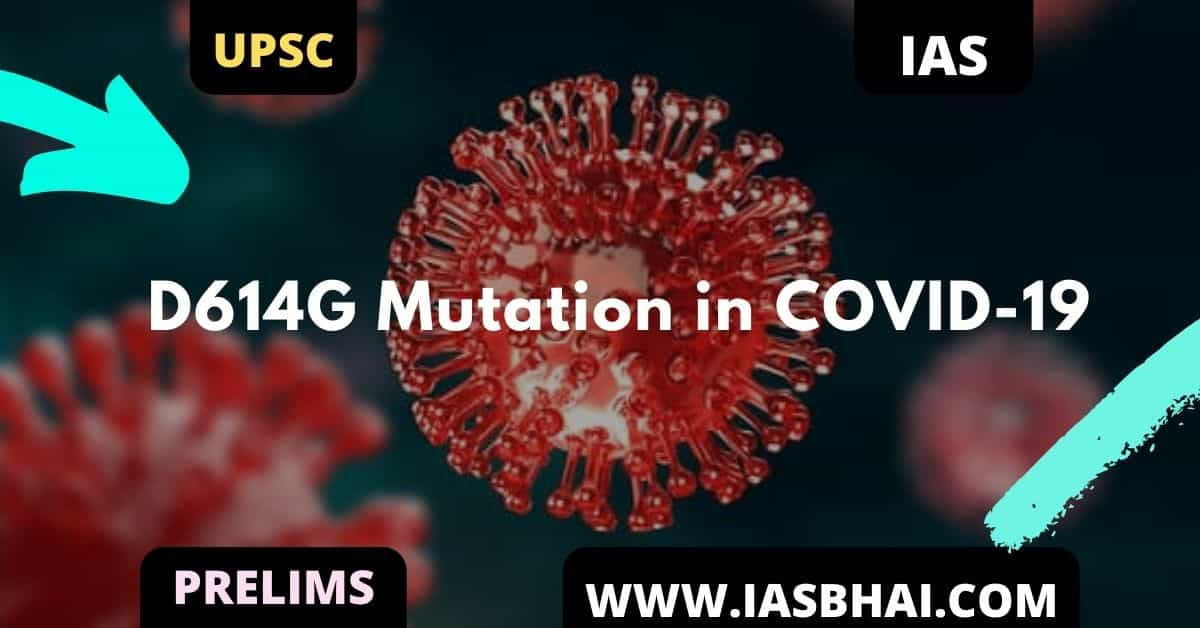 What is the D614G Mutation in COVID-19 ?
