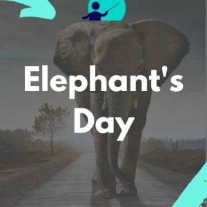 World Elephant's Day