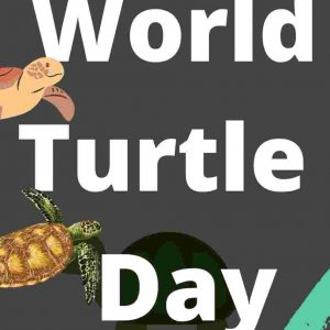 World Turtle Day UPSC